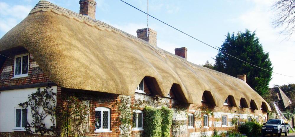 long-roof-crop